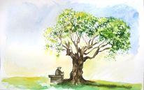 Natur, Alter mann, Aquarellmalerei, Olivenbaum