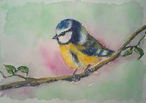 Blau, Aquarellmalerei, Vogel, Rosa