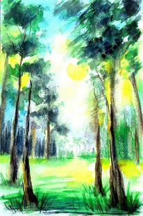 Sommer, Wald, Baum, Sonne