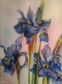 Pflanzen, Aquarellmalerei, Blau, Blumen