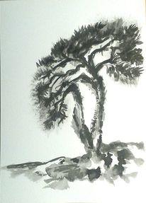 Weiß, Baum, Zeichnungen landschaft, Tuschezeichnung