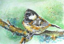 Zeichnung, Vogel, Tuschmalerei, Kohlmeise