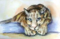 Panther, Florida, Porträtmalerei, Braun