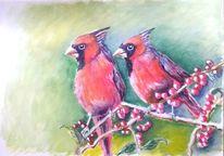 Vogel, Malerei, Natur, Roter kardinal