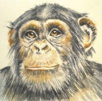 Schimpanse, Aquarellmalerei, Portrait, Tiere