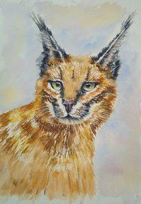 Tierportrait, Raubkatze, Aquarellmalerei, Katze