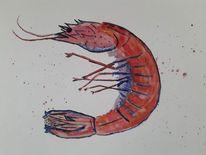 Garnelen, Tiere, Aquarellmalerei, Rot