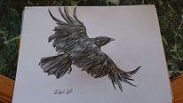 Aquarellmalerei, Fliegender rabe, Figur, Aquarell