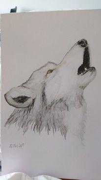 Aquarellmalerei, Heulender wolf, Figur, Malerei
