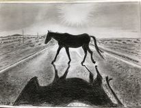 Pferde, Bleistiftzeichnung, Schatten, Zeichnungen