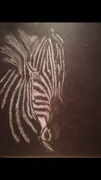 Schwarz, Zeichnungen, Zebra