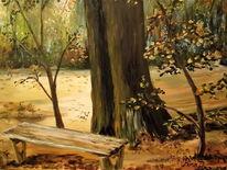 Herbst, Romantik, Ruhe, Wald