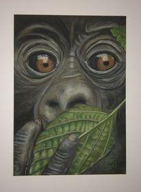Portrait, Urwald, Malerei, Menschenaffen
