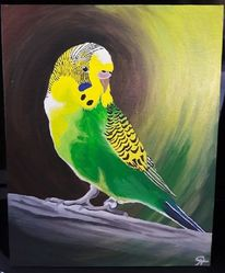 Wellensittich, Acrylmalerei, Tiere, Malerei