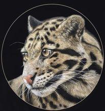 Tiere, Pastellmalerei, Leopard, Katze