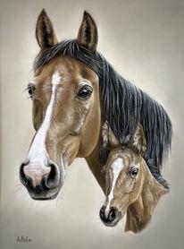 Pastellmalerei, Tierportrait, Pferde, Fohlen