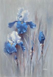Blumen, Iris, Schwertlilie, Malerei