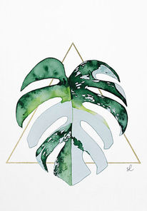 Monstera leaf, Monstera panaschiert, Monstera white leaf, Malen
