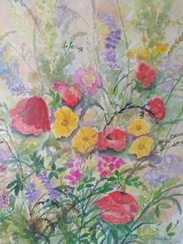 Natur aquarell, Blumen aquarell, Sommerblumen aquarell, Pflanzen aquarell