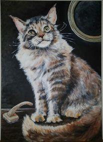 Katze, Acrylmalerei, Langhaarkatze, Spiegel