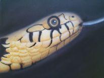 Reptil, Schlange, Giftig, Schuppen