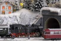 Winter, Modellbahn, Schneetannen, Modelleisenbahn
