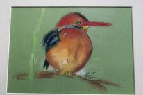 Natur, Malerei, Vogel, Eisvogel