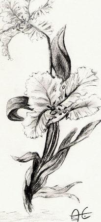 Malerei, Blumen, Natur