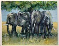 Landschaft, Elefant, Savanne, Kenia