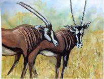 Antilope, Aquarellmalerei, Landschaftsmalerei, Herd