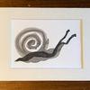 Schnecke, Malerei, Schwarz, Zeichnung