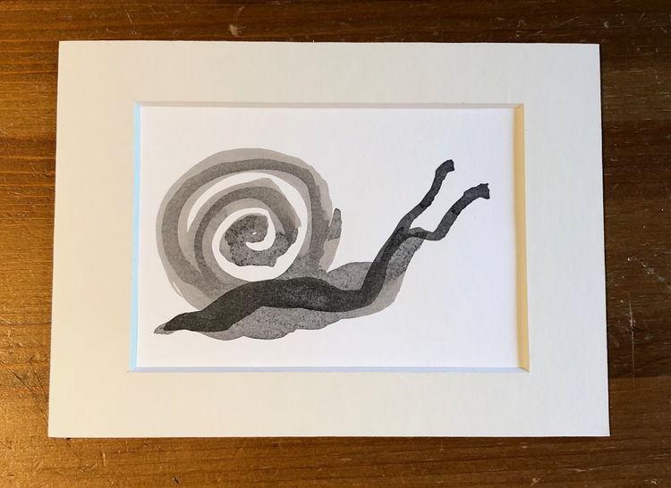 Schwarz, Zeichnung, Passepartout, Tuschmalerei, Schnecke, Malerei