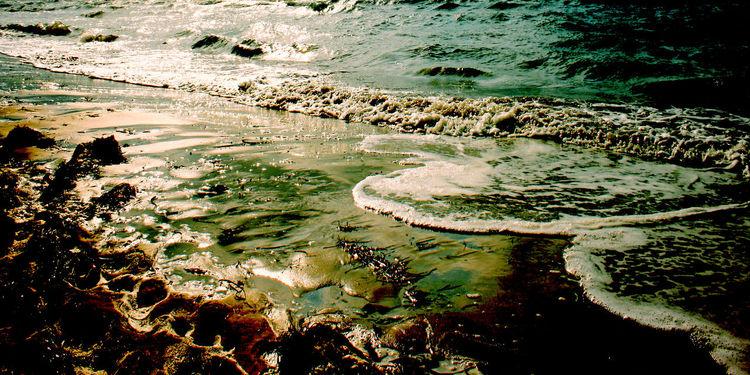 Pineda, Wasser, Warm, Meer, Baden, Urlaub
