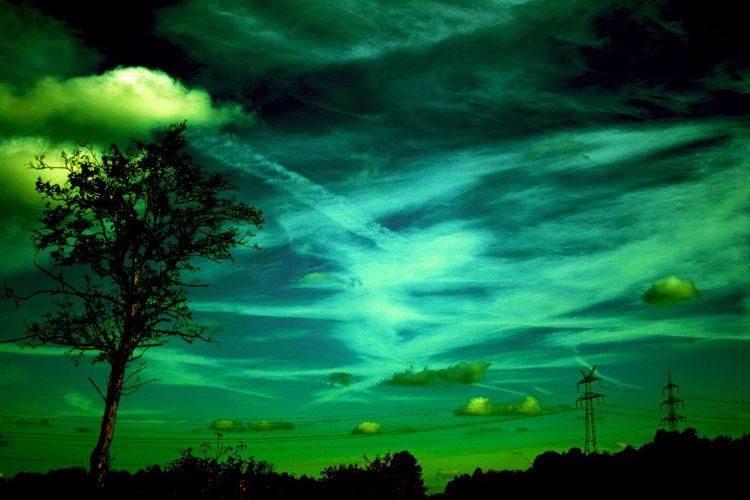 Baum, Himmel, Pflanzen, Strommasten, Wolken, Stromleitungen