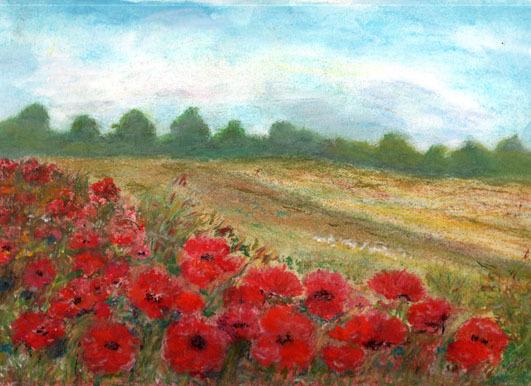 Wald, Rot, Pastellmalerei, Sommer, Mohnblumen, Wolken