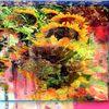 Digitale kunst, Sommerblumen, Stimmungsvoll,