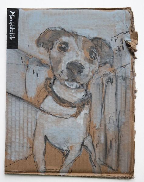 Hund, Marktplatztöle, Stadt, Zeichnungen