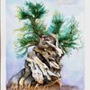 Baum, Knorrig, Olive alt, Aquarell