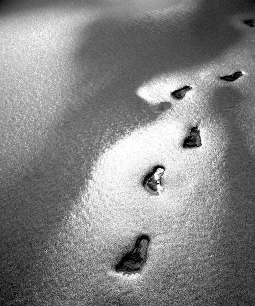 Fuß, Sand, Fotografie