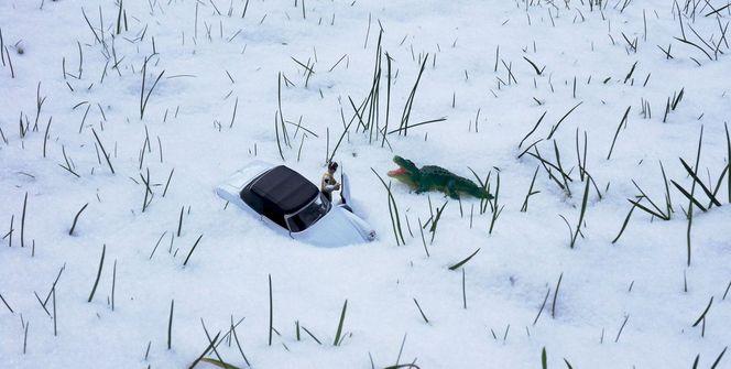 Schnee, Miniaturfiguren, Krokodil, Leben, Wirklichen