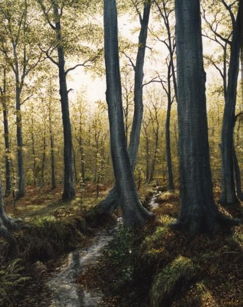 Baum, Realismus, Natur, Bach, Wald, Naturalismus