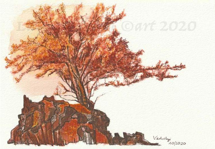 Baum, Naturstudie, Landschaft, Eberesche, Tuschmalerei, Oktober