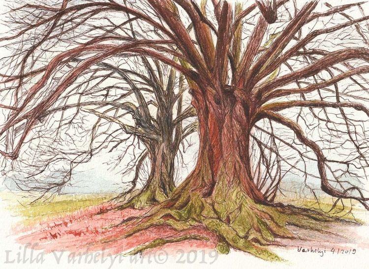Baum, Tuschmalerei, Moos, Natur, Zeichung, Landschaft