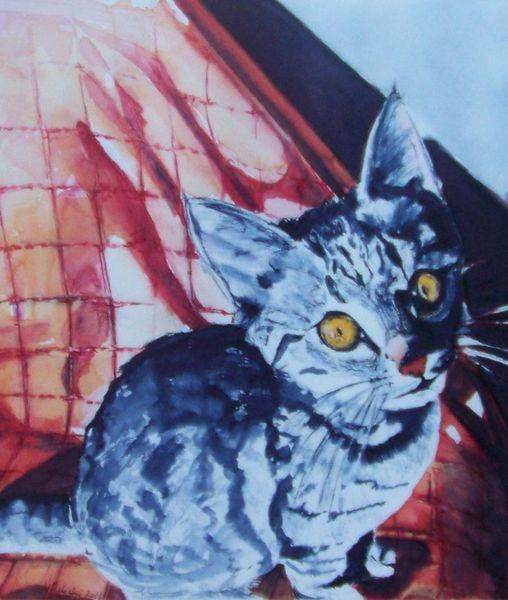 Schatten, Katzenportrait, Licht, Aquarellmalerei, Katze, Neugier