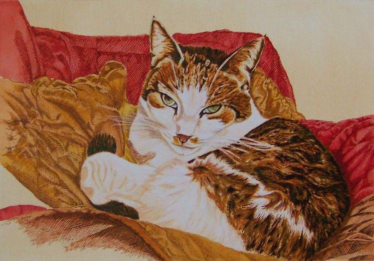 Federzeichnung, Muster, Tierportrait, Katze, Falten, Katzenportrait