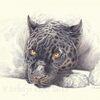 Großkatze, Wildtier, Tuschmalerei, Panther