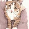 Katze, Tuschmalerei, Tierzeichnung, Zeichnung