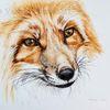 Fuchs, Tuschmalerei, Gesicht, Tierportrait