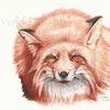 Wildtier, Animalpainting, Fuchs, Tierwelt