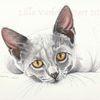 Katze, Süßekatze, Tierportriat, Tuschmalerei